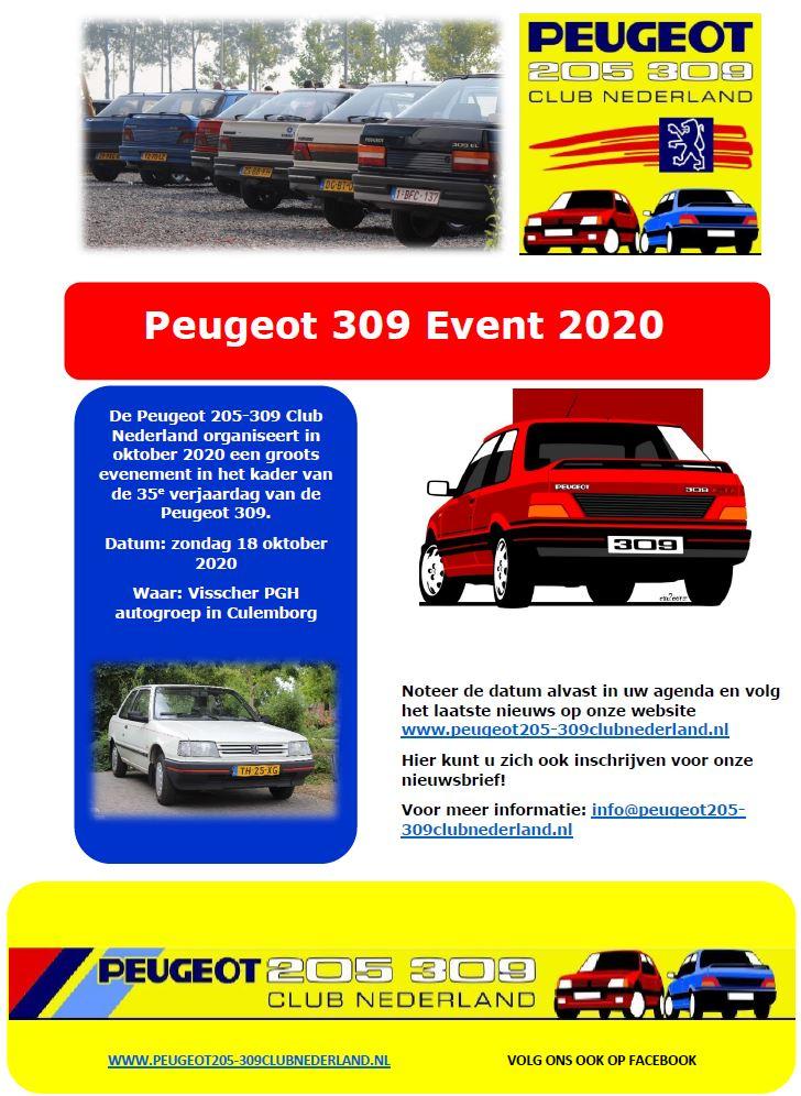 Peugeot 205 event 2018.jpeg